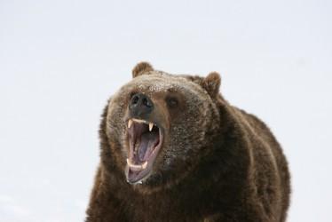 la-borsa-di-tokyo-sprofonda-nel-mercato-orso