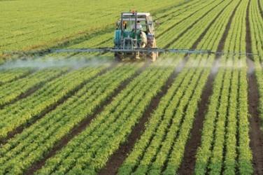 investire-nel-settore-agricolo-consigli-per-un-buon-raccolto-