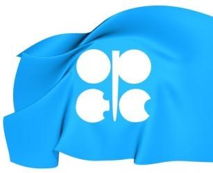 L'OPEC taglia le stime sulla domanda per il suo petrolio