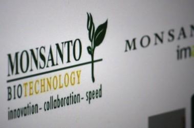 Monsanto: Quarto trimestre in rosso, taglierà 2.600 posti di lavoro