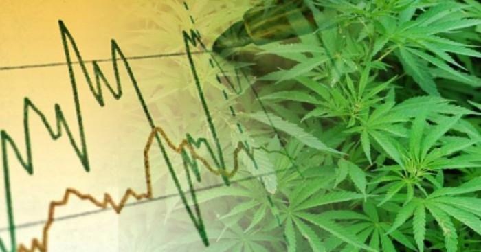 Oro o cannabis: dove è meglio investire nel 2019?