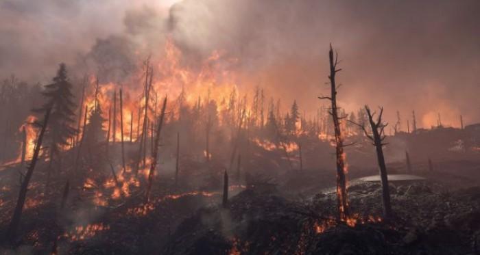 Cambiamenti climatici, l'incendio in Siberia causa reazioni a catena