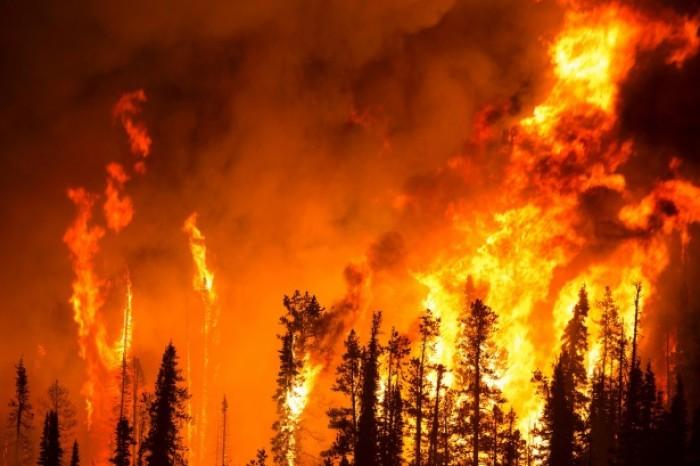 L'Artico brucia, oltre 3,2 milioni di ettari di foresta in fiamme tra Siberia e Yakuzia