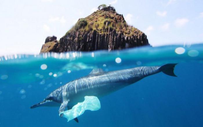 Emergenza plastica, negli oceani quantità un milione di volte superiori di quel che si prevedeva