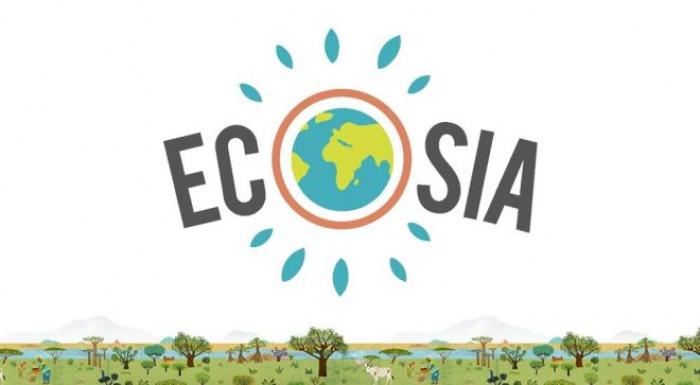 Ecosia, il motore di ricerca contro la deforestazione in Amazzonia ...
