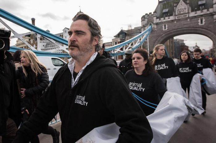 Joaquin Phoenix insieme ad Animal Equality contro gli allevamenti intensivi