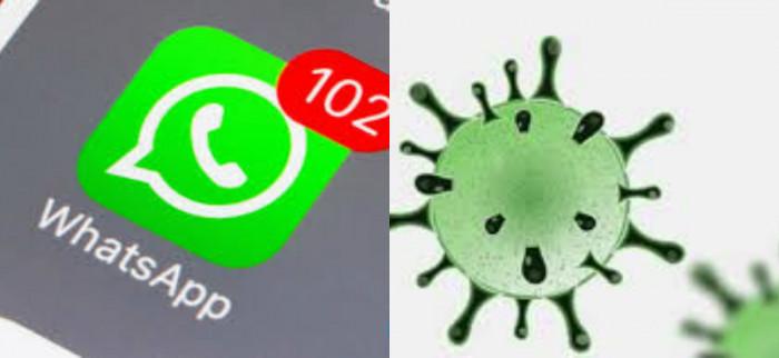 Whatsapp introduce una nuova funzione per scoprire false notizie e truffe
