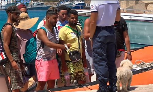 Immigrati col barboncino sbarcano a Lampedusa, ecco come si gestisce l'emergenza coronavirus