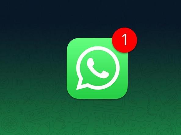 Whatsapp: arrivano le Smart Reply