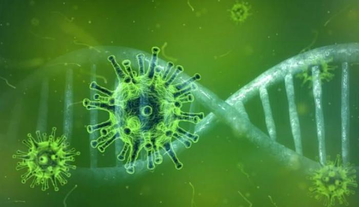 Coronavirus, un'analisi rivela che gli anticorpi possono svanire in poco tempo