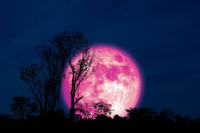 Superluna rosa: martedi 27 aprile. Come e quando vederla meglio