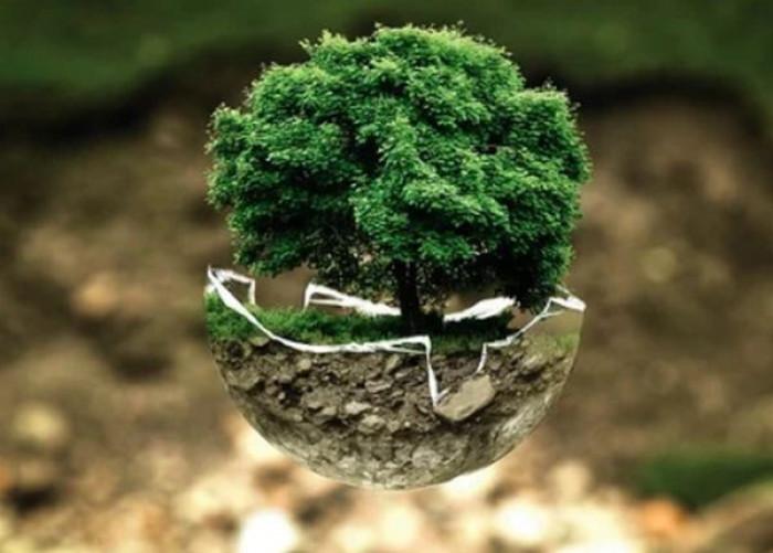 Commissione europea sul clima, presentato il piano per il taglio del 55% delle emissioni entro il 2030