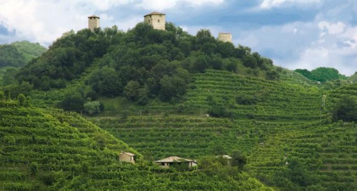 Tra Russia e Francia scoppia la guerra dello champagne. Opportunità per il prosecco made in Italy