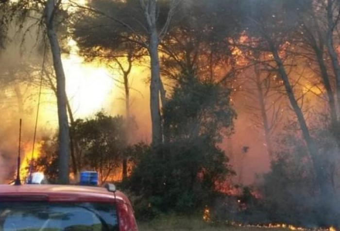 Italia devastata dalle fiamme, da quando Renzi ha abolito il corpo forestale gli incendi si sono sestuplicati